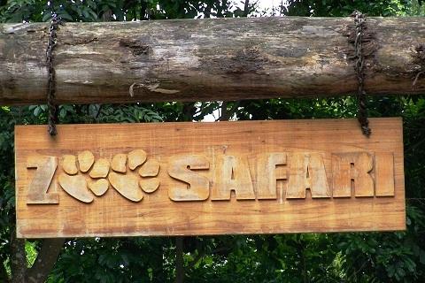 Zoo Safari, opção para quem busca um pouco mais de interação com os animais. Imagem: Janaína Calaça