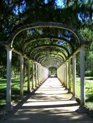 Jardim Botânico. Rio de Janeiro. Imagem: Jeguiando.