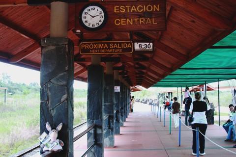 Jegueton esperando o trem para as Cataratas Argentinas. Porto Iguaçu. Imagem: Erik Pzado.