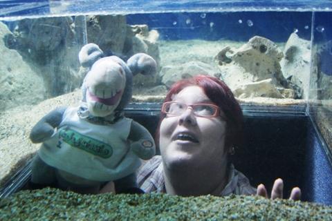 Jegue e Jana no aquário ou fora dele? Imagem: Erik Pzado.