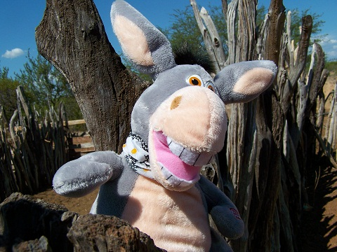 Jeguiando, versão viajante pé no mato. Imagem: Fábio Brito.