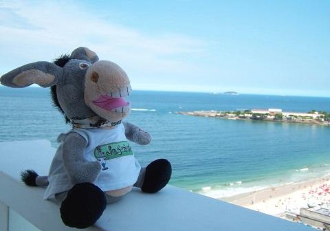 Jegueton, versão viajante praieiro no Rio de Janeiro. Imagem: Janaína Calaça.