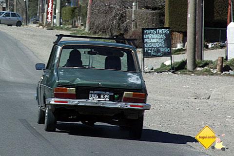 Muitas arabacas à vista no caminho de volta à Bariloche. Imagem: Erik Pzado.