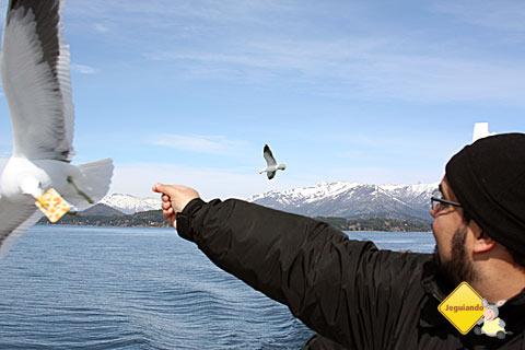 Erik dando bolacha seca para a gaivota. Prefiro biscoito recheado, gaivota! Prefiro!