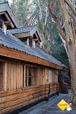 Casinha de madeira no meio do Bosque de Arrayanes. Imagem: Erik Pzado.