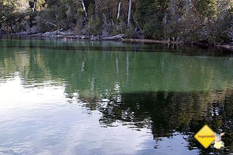 Bosque de Arrayanes, Argentina. Imagem: Erik Pzado.