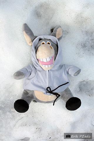 """Jegueton fazendo """"anjinho"""" na neve. #Picolédejegue. Imagem: Erik Pzado."""