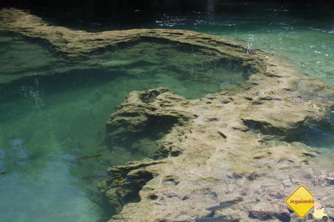 Piscinas naturais e cachoeiras submersas do Balneário Municipal de Bonito, no Mato Grosso do Sul. Imagem: Erik Pzado.