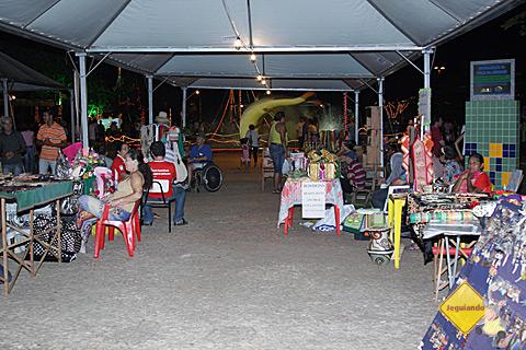 Bonitenses expõem artesanato e outras peças no 9º Festival da Guavira, Bonito, Mato Grosso do Sul. Imagem: Erik Pzado.