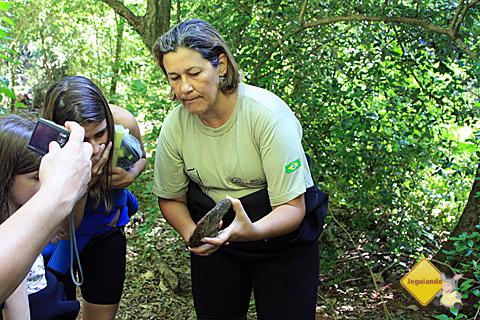 Guia Chris fala sobre a flora que margeia o Rio da Prata. Imagem: Erik Pzado.