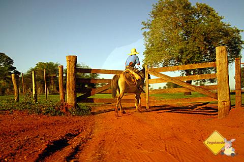 Pegando estrada e voltando para Bonito, Mato Grosso do Sul. Imagem: Erik Pzado.