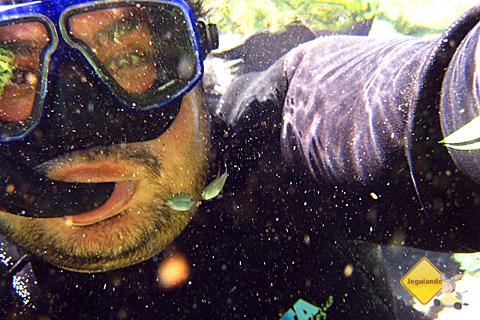 Erik Pzado debaixo das águas do Rio da Prata. Imagem: Janaína Calaça.