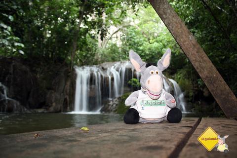 Jegueton e ao fundo uma das sete cachoeiras do circuito. Bonito, Mato Grosso do Sul. Imagem: Erik Pzado.