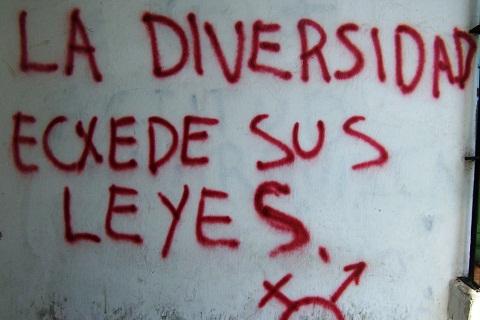 A diversidade excede suas leis. Imagem: Janaína Calaça