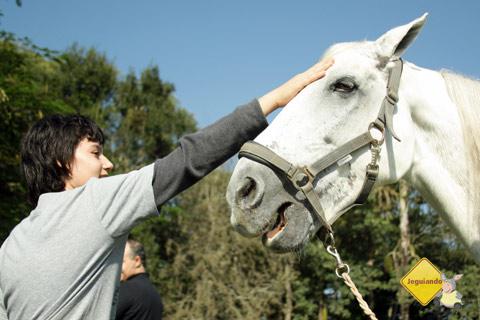 Interação com os animais na Mini Fazendinha. Santa Clara Eco Resort, Dourado, SP. Imagem: Erik Pzado.