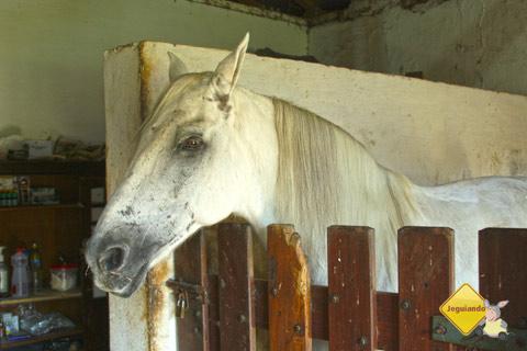 Cavalgadas para a cidade de Dourado fazem parte da programação do resort. Imagem: Erik Pzado.