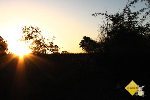 E o sol se põe na estrada. De Campo Grande a Bonito. Imagem: Erik Pzado