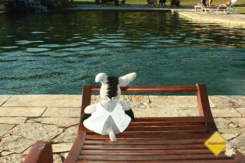Jegueton não quis fazer a trilha, então ficou à beira da piscina tomando sol. Imagem: Erik Pzado