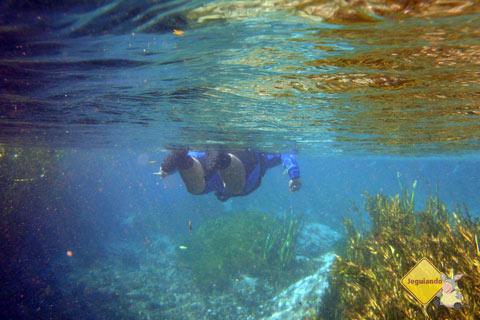 Erik entre o azul e o dourado. Imagem: Janaína Calaça