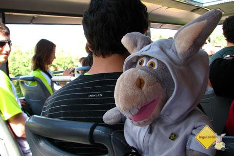 Jegueton passeando de ônibus pelo Parque Nacional do Iguaçu. Imagem: Janaína Calaça