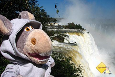 Jegueton curtindo uma tarde nas Cataratas do Iguaçu. Imagem: Janaína Calaça