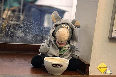 Jegueton tomando seu café quentinho na cumbuca enquanto garoa em Montréal. Imagem: Janaína Calaça