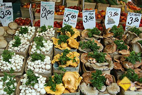 Cogumelos variados e frescos. Marché Jean-Talon (Jean-Talon Market), Montréal, Canadá. Imagem: Erik Pzado