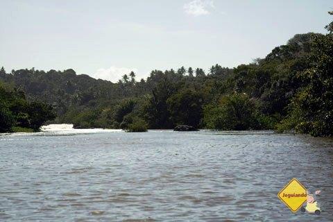Rio Pojuca. Praia do Forte, Bahia. Imagem: Janaína Calaça