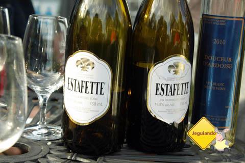 Degustação de vinhos em Domaine des Côtes d'Ardoise, Eastern Townships, Canadá. Imagem: Erik Pzado