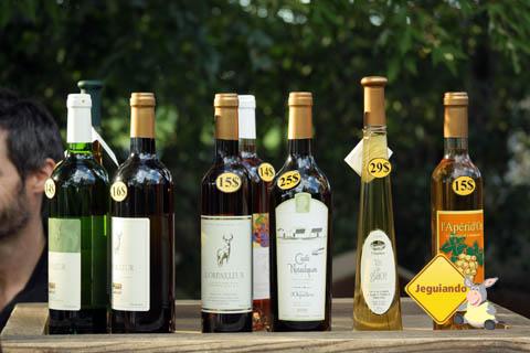 Degustação de vinhos. Vinícola de l'Orpailleur, Dunham, Canadá. Imagem: Erik Pzado
