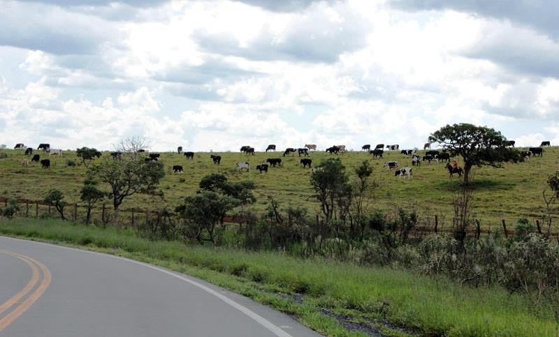 destaque_estrada