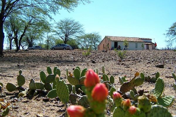 Velha casa, lembranças antigas. Floresta do Navio, Pernambuco. Imagem: Arquivo Jeguiando