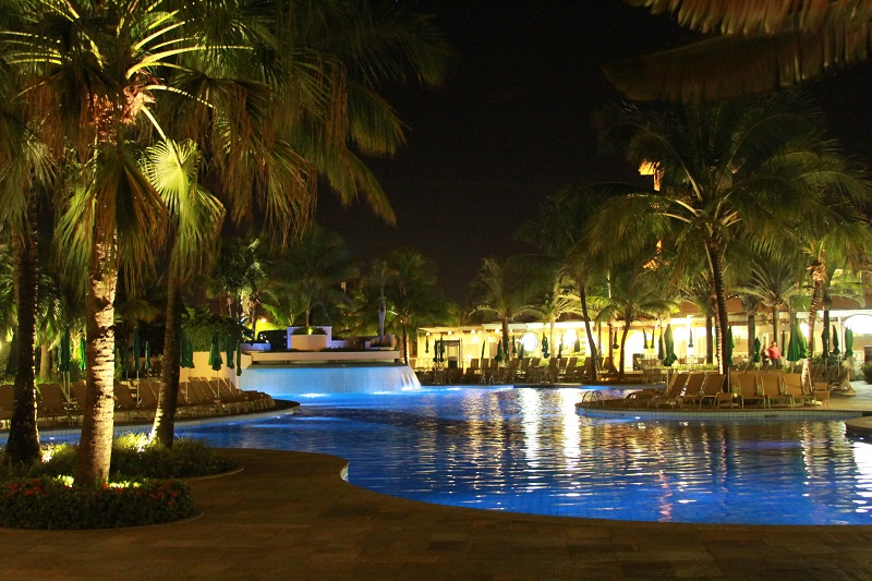 royal_palm_destaque1