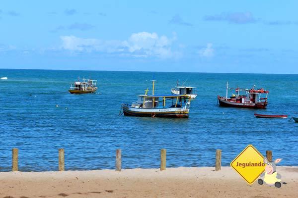 Praia do Forte, BA. Imagem: Erik Pzado