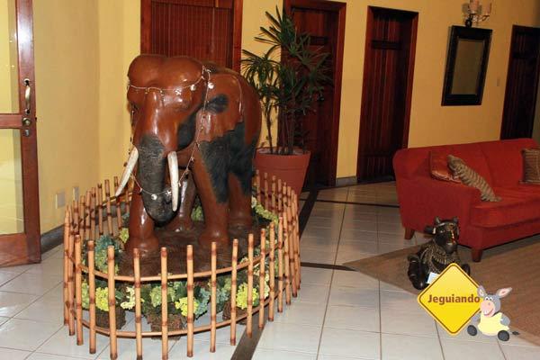 Na recepção. Canto da Floresta Eco Resort, Amparo, SP. Imagem: Erik Pzado