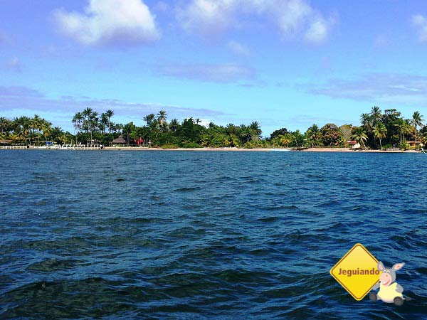 Ilha de Campinho. Baía de Camamu, Bahia. Imagem: Janaína Calaça
