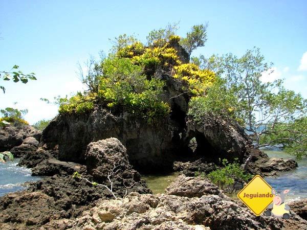 Pedra da Catedral. Ilha de Pedra Furada. Baía de Camamu, Bahia. Imagem: Janaína Calaça