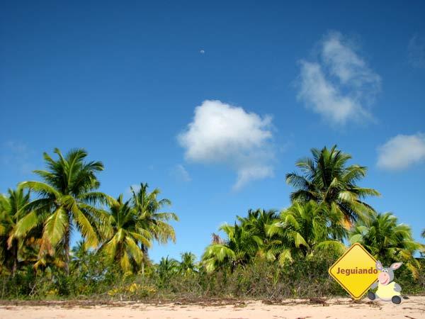 Ilha de Campinhos. Baía de Camamu, Bahia. Imagem: Janaina Calaça