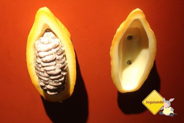 Réplica de cacau. Imagem: Janaína Calaça