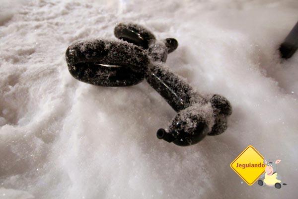 Brinquedo congelado! Imagem: Erik Pzado