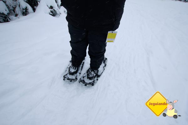 Snowshoe. Imagem: Erik Pzado