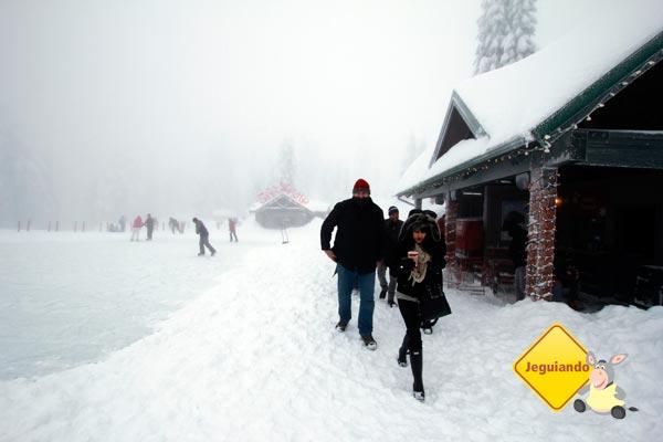 Hora de caminhar na neve. Imagem: Erik Pzado