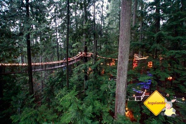 Treetops Adventure. Imagem: Erik Pzado