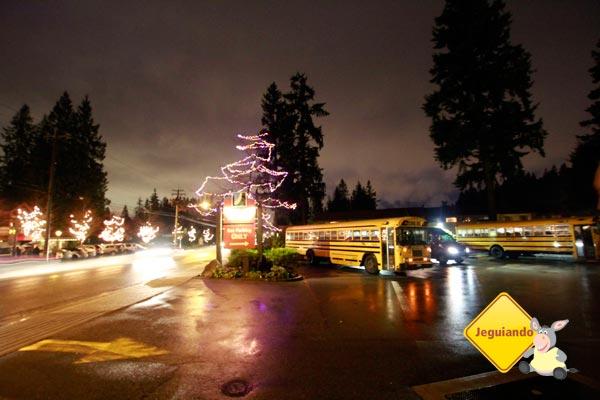 Decoração natalina do Capilano Suspension Bridge Park. Vancouver, British Columbia. Imagem: Erik Pzado