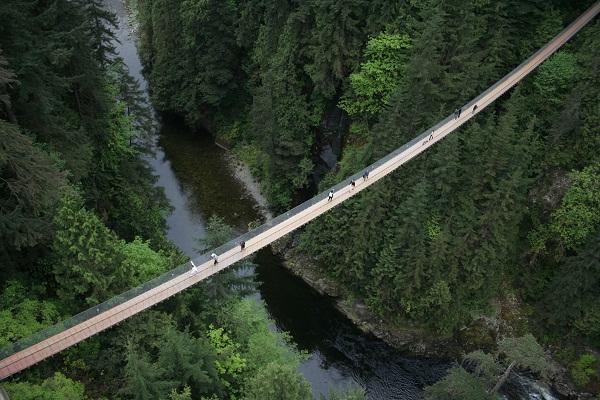 Imagem aérea da Capilano Suspension Bridge. Imagem: Divulgação