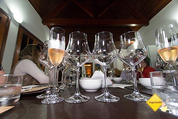 Workshop de vinhos com a Sommelière Gabriela Bigarelli, integrante do 7 Sommeliers. Imagem: Erik Pzado