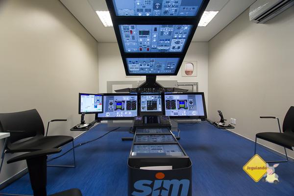 Flat panel simulator - Imagem: Erik Pzado