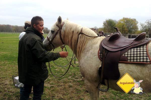 Para os amantes de cavalos, o turismo de Camarge oferece opções de cavalgadas para os turistas. Camargue, França. Imagem: Janaína Calaça