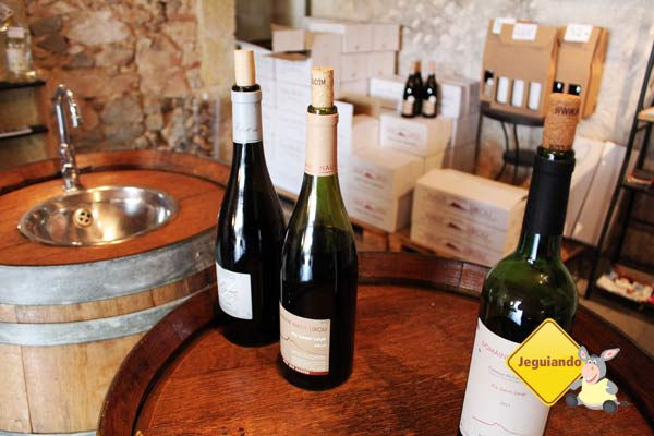 Degustação de vinhos em Mas Du Notaire. Vauvert, França. Imagem: Janaína Calaça