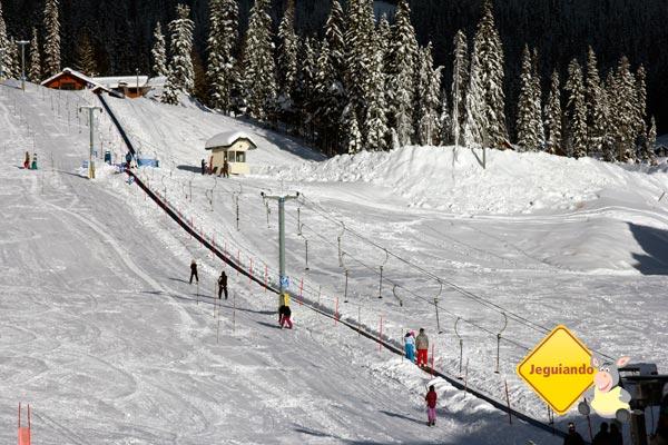 Que tal esquiar no Canadá? Imagem: Erik Pzado